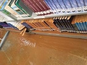 enchente ifes alegre 01 - Governo do Estado destina R$ 385 mil para instituições científicas atingidas pelas enchentes de 2020